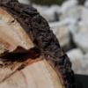 Lasertechnik Ötztal - Gravuren auf Holz, Glas, Stein, Metall, Textilien, Kunststoffe - Produkte